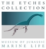 The Etches Collection, Museum of Jurassic Marine Life logo