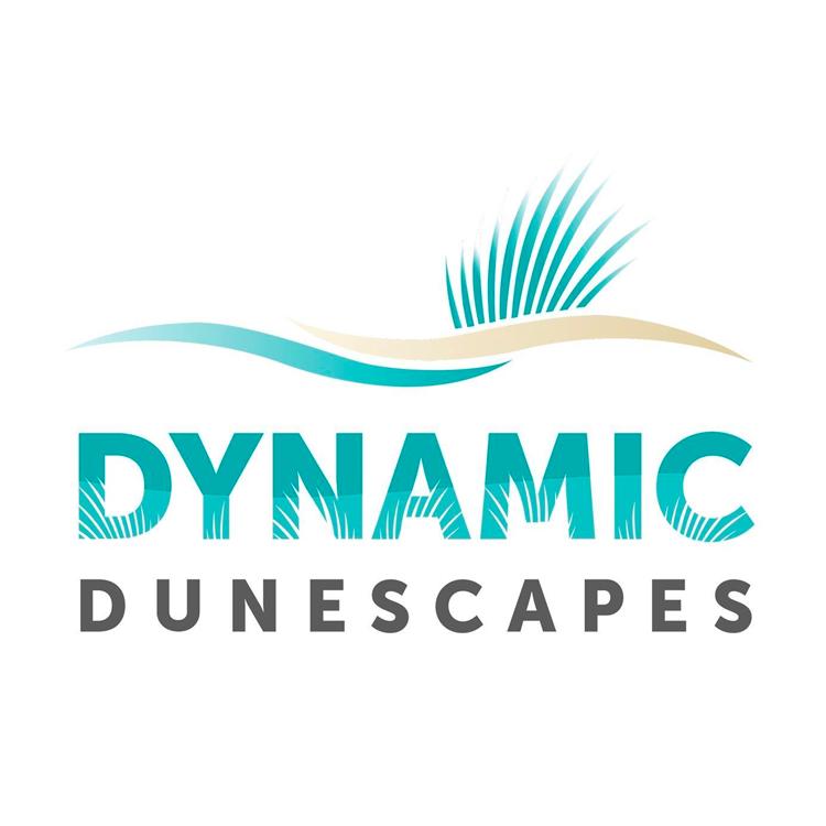 Dynamic Dunescape
